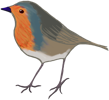 Robin of Bloxley